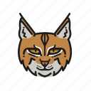 animal, animalpack, bobcat, cat, earth, planet, wildlife icon