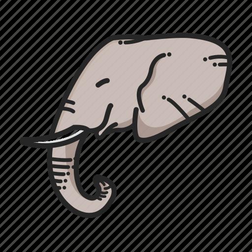 africa, animal, animalpack, elephant, jungle, tusk icon