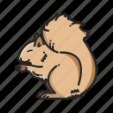 animalpack, squirrel, nature, chomp, wood, forest, teeth