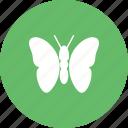 beetle, crawler, insect, ladybug, mite, pest, termite icon