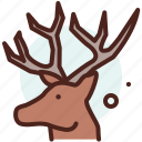 reindeer, season, cold, winter, snow