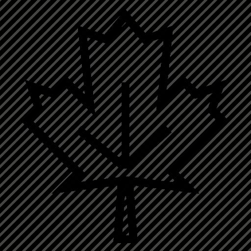 christmas, leaf, maple, winter icon