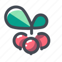 berry, christmas, cranberry, holiday, new year, vacation, winter icon