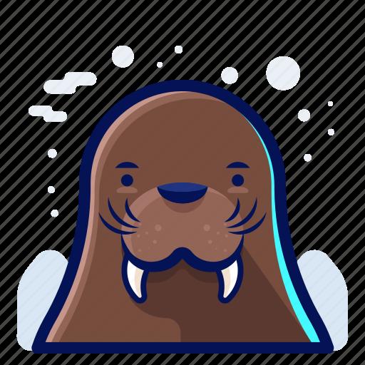 animal, cold, walrus, wildlife, winter icon