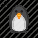 animal, bird, ice, penguin, seasons, snow, winter