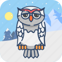 animal, bird, owl, snow, winter, wisdom icon