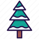 christmas tree, evergreen, forest, plan, winter, xmas