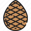 cone, december, holidays, pine, tree, winter