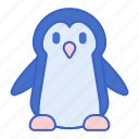 animal, bird, penguin, snow