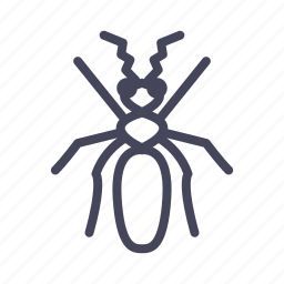 ant, insects, termite, white ant, worker-ant icon
