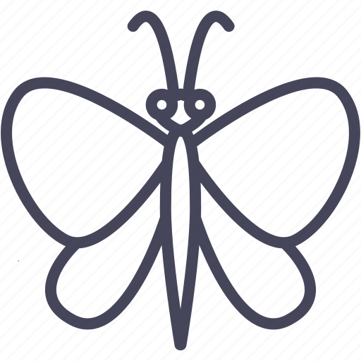 butterfly, fly, insect, insects, nature icon