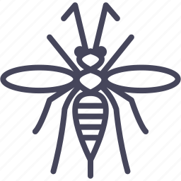 axis, insect, insects, sting, vermit, wasp icon