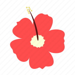 beauty, delicate, floral, flower, hibiscus, nature icon