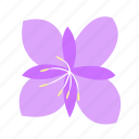 ally, fireweed, floral, flower, nature icon