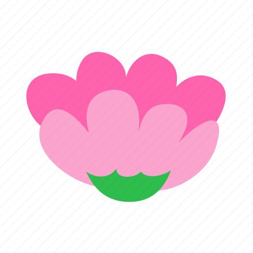 dahlia, elegance, floral, flower, nature icon