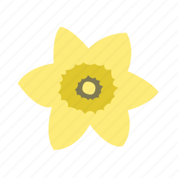 daffodil, floral, flower, nature, newbeginning icon