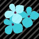 floral, flower, hydrangea, nature, understanding icon