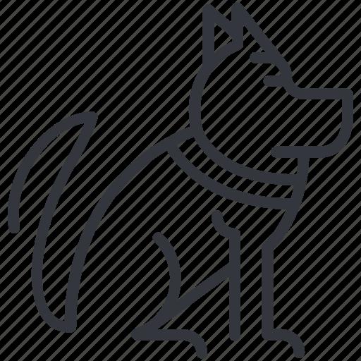 Animal, dogs, german shepherd, husky, sit, waiting, yummy icon - Download on Iconfinder