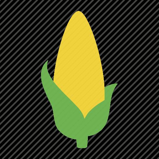 corn, corn cob, corncob, maize, maize cob, vegetable, vegetables icon