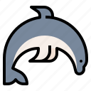 animal, dolphin, wildlife, zoo icon