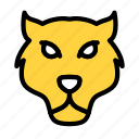 lion, zoo, animal, face, wild