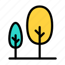 tree, forest, park, garden, zoo