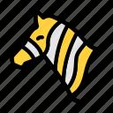 zebra, wild, animal, face, zoo