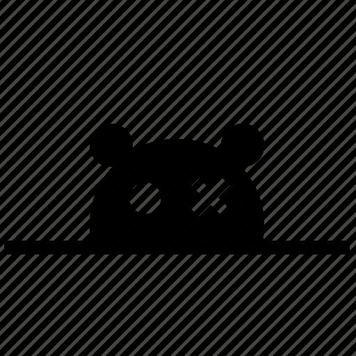 animal, bear, face, head, zoo icon