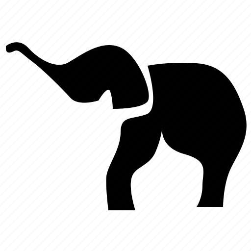 animal, body, elephant, head, zoo icon