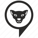 cat, geo, location, pointer, puma, tiger icon