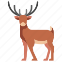 animal, antler, deer, mammal, reindeer, stag, wildlife icon