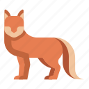 animal, fox, furry, vulpes, wild, wildlife, zoo icon