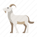animal, domestic, farm, goat, livestock, mammal, zoo icon