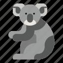 australia, bear, zoo, koala, animal, mammal, marsupial