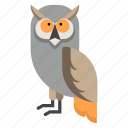 animal, bird, night, owl, wildlife, wisdom, zoo icon