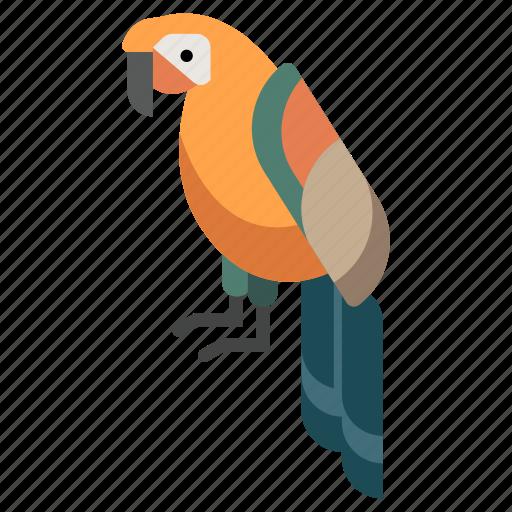 animal, bird, macaw, parrot, pet, tropical, zoo icon