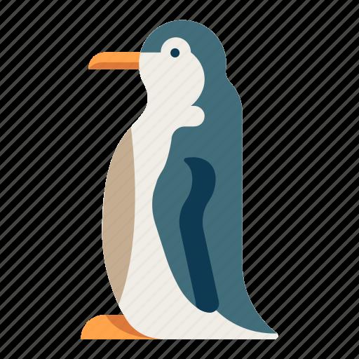 animal, antarctic, bird, penguin, sea, wildlife icon