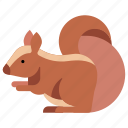 animal, furry, squirrel, tail, wildlife, zoo icon