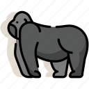 animal, ape, gorilla, kingkong, mammal, monkey, zoo icon