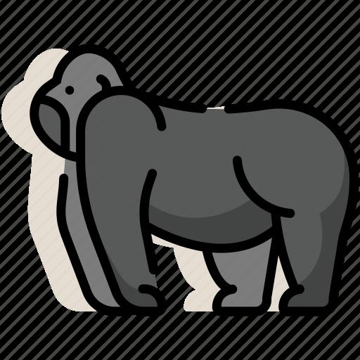 animal, ape, gorilla, kingkong, mammal, monkey, zoo icon