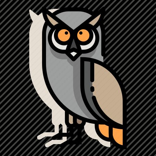 animal, bird, night, owl, wildlife, wisdom, zoo icon