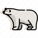 animal, antarctica, arctic, bear, mammal, polar, wildlife icon