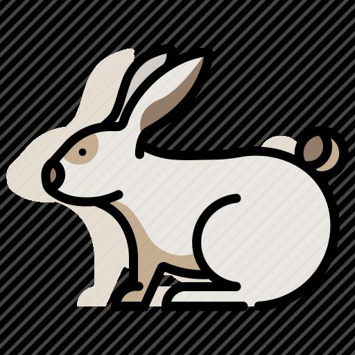 animal, bunny, domestic, mammal, pet, rabbit, zoo icon
