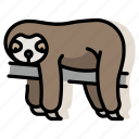 animal, lazy, mammal, sloth, slow, wildlife, zoo icon