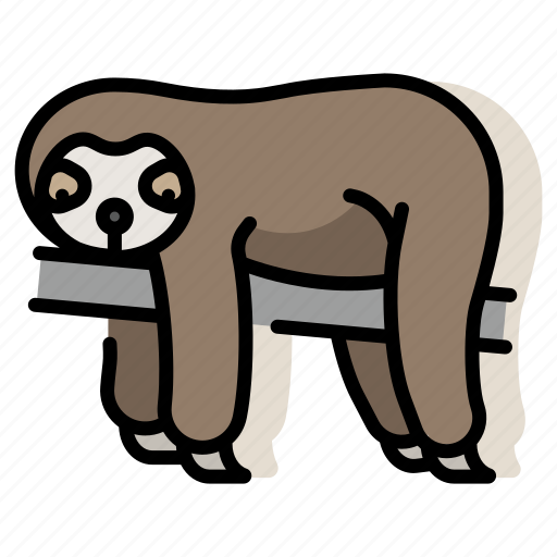 animal, lazy, mammal, sloth, slow, wildlife, zoo icon