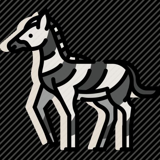 africa, animal, mammal, safari, wildlife, zebra, zoo icon