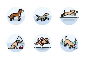 Dog Activities - Round