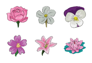 Floral Sketchy Icons