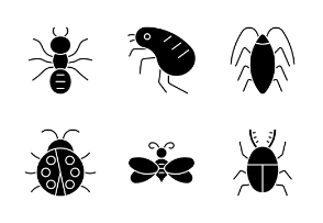 Glyph Insect