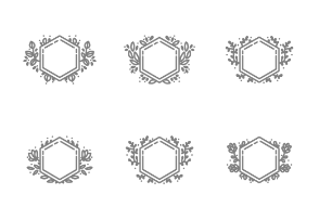 Hand Drawn Hexagon Wreaths and Frames
